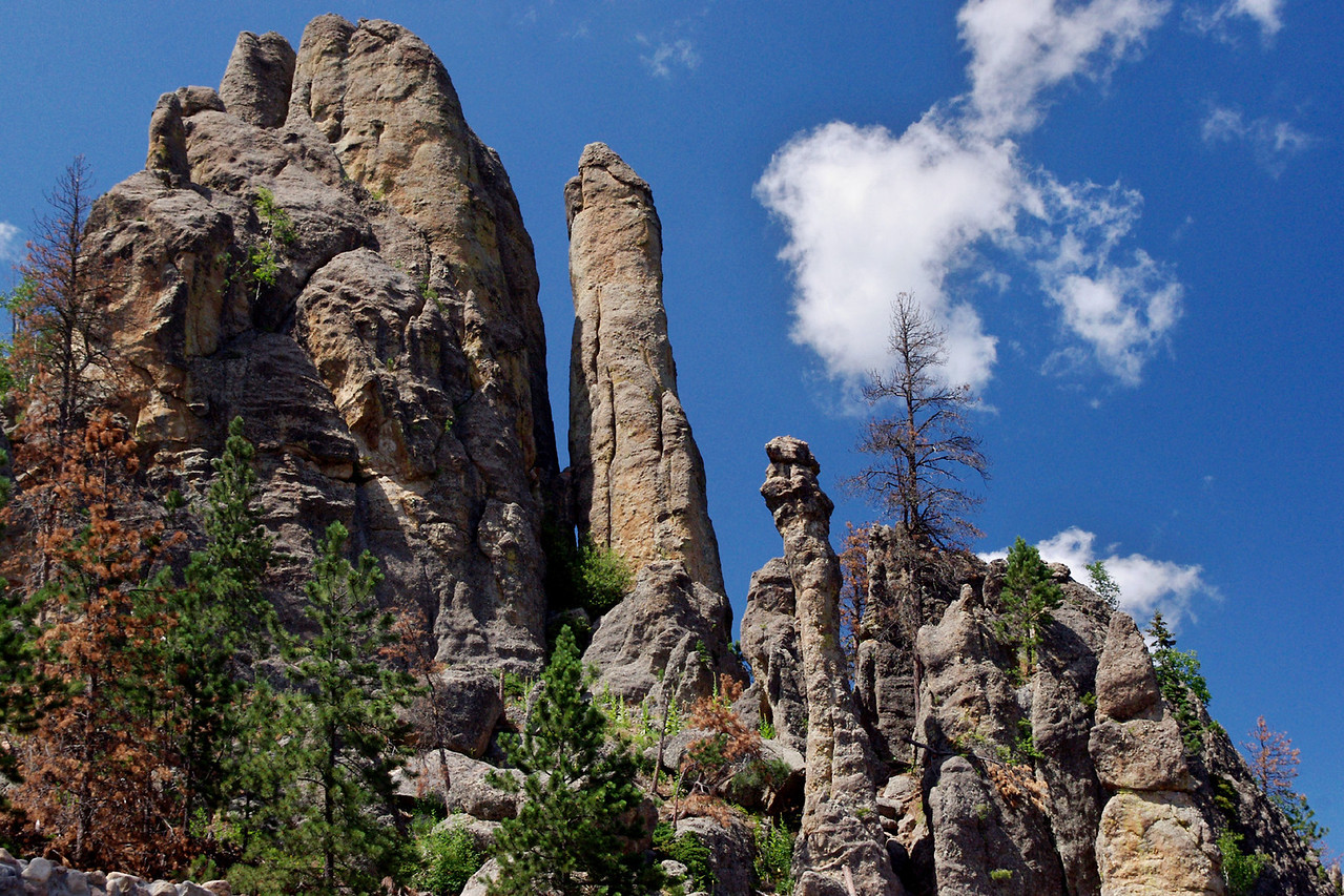 Rock formations, Needles Highway, Custer State Park, Black Hills, South Dakota.