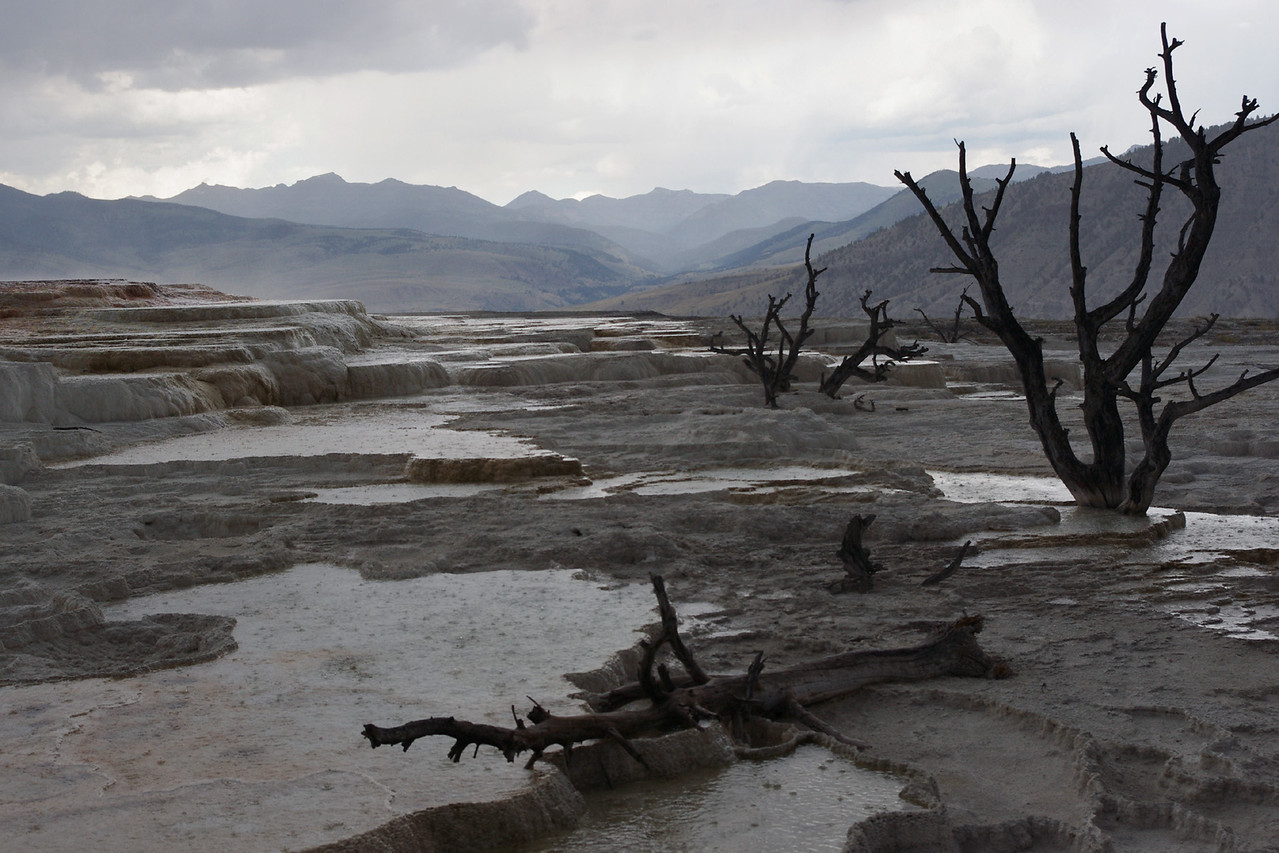 Upper terraces in the rain, Mammoth Hot Springs area of Yellowstone National Park.