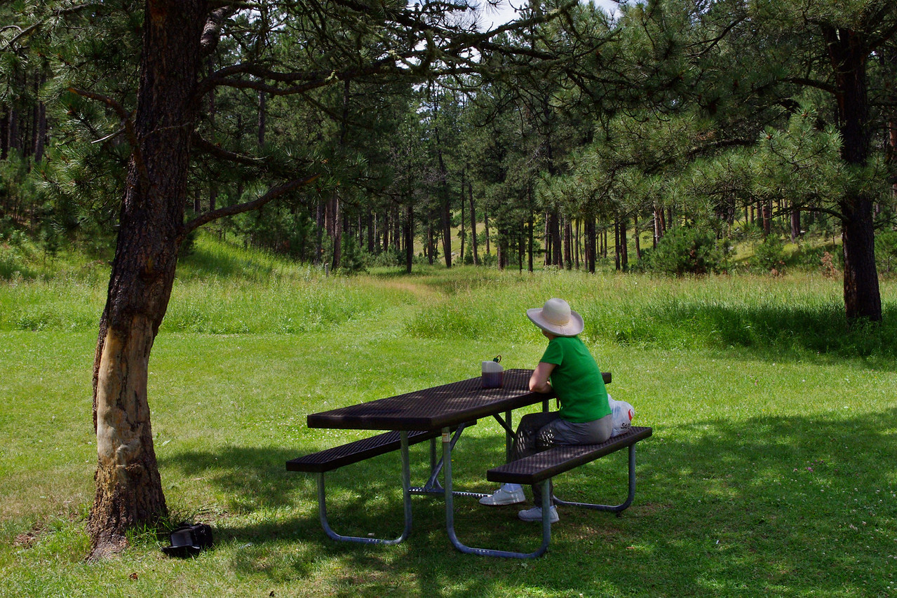 Picnic lunch, Custer State Park, South Dakota.