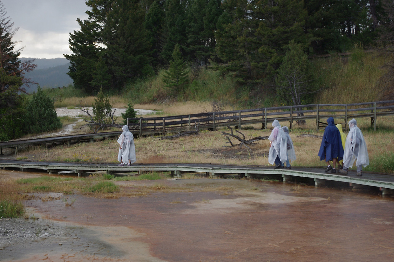 Rain suited tourists on the boardwalk, upper terraces, Mammoth Hot Springs area, Yellowstone National Park.