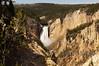 Lower Falls, Yellowstone Grand Canyon