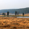 2020-09-16_15_Yellowstone_Smokey Hayden Valley.JPG<br /> <br /> Dozens of fires all over the Western States sent smoke across Montana and Wyoming.