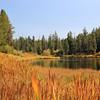 2021-09-14_18_Idaho_Buffalo River.JPG