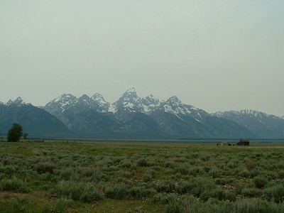 Yellowstone & Tetons