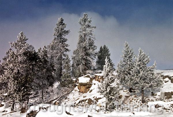 069 Yellowstone2006 Day4 Jan24 Fountain Paint Pot