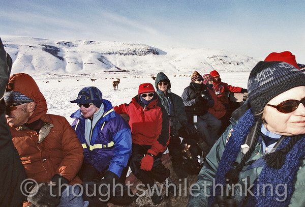 016 Yellowstone2006 Day2 Jan22 sleigh ride Elk Refuge