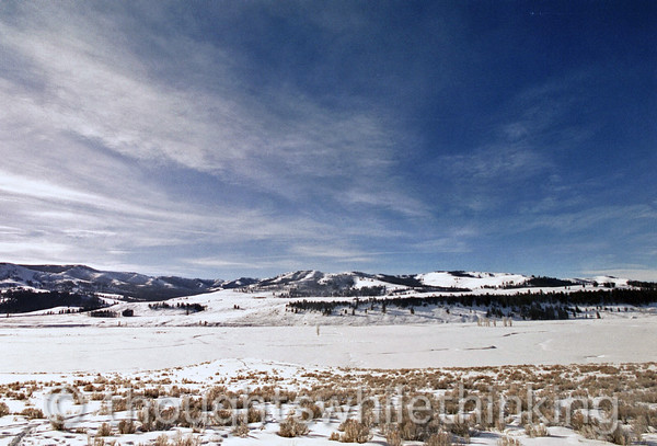 100 Yellowstone2006 Day5 Jan25 Lamar Valley