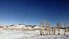 093 Yellowstone2006 Day5 Jan25 Lamar Valley