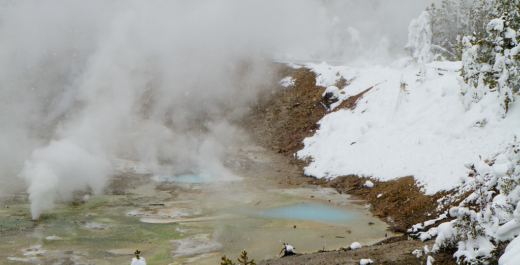The Norris basin has the hottest thermal features. The geyser on the left was erupting steam continuously.