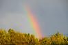 rainbowBMF_1902