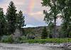 moose and rainbowBMF_2062