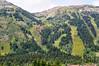 ski slopeBMF_1458