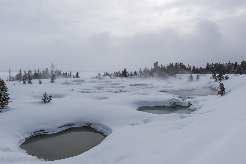 The coldest spot we visited, a geothermal area right on Yellowstone Lake (which was frozen). Probably about 5 degrees with a decent wind whipping off the lake.