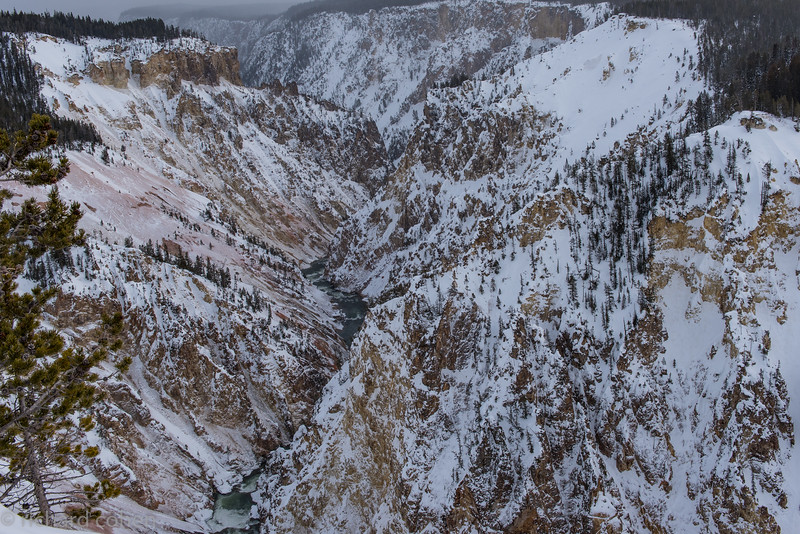 Another view. These were taken while Lisa and I were cross country skiing along the edge of the canyon.