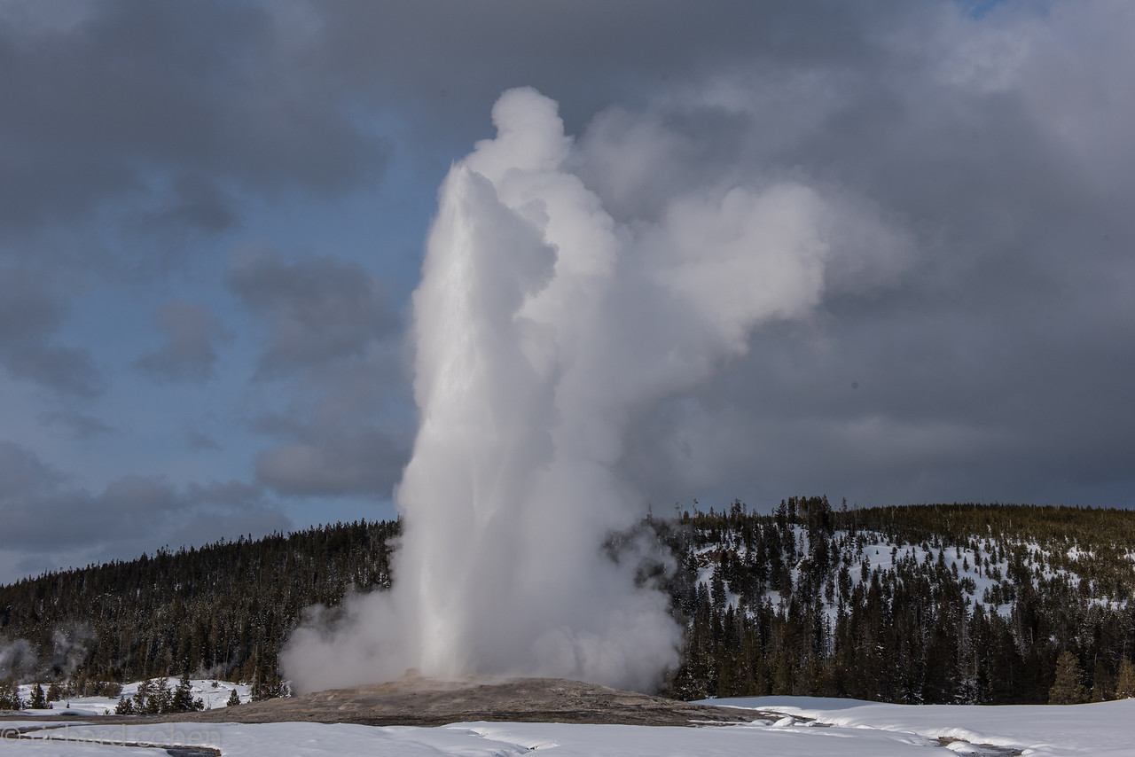 Old faithful. Nice to see it in front of about 8 people.