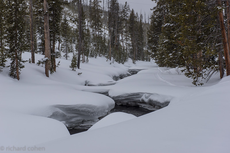 Gorgeous stream which we skiied right next to.