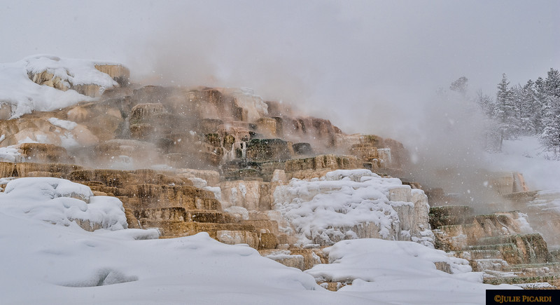 Palette Spring at Mammoth Hot Springs