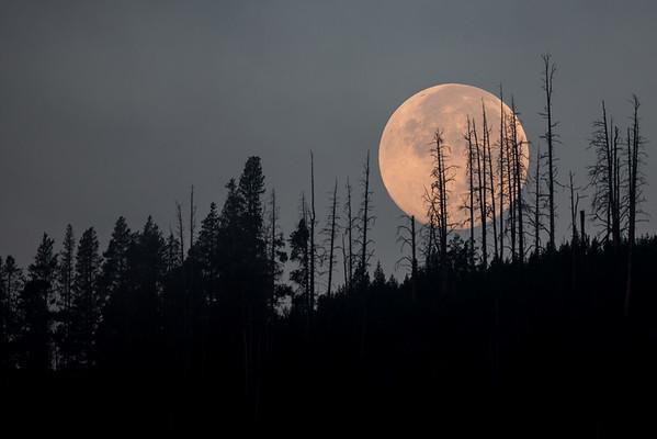 Lunar Morn