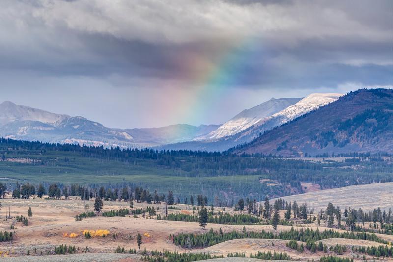 Rainbow over Yellowstone