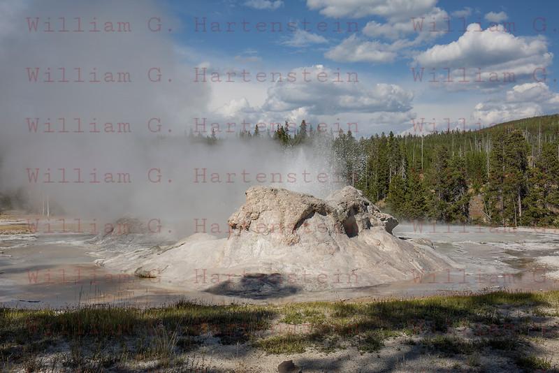 Castle Geyser, Yellowstone, WY 08-16-2017