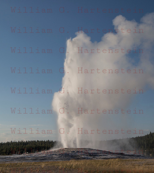 Old Faithful Geyser, Yellowstone, WY 08-17-2017