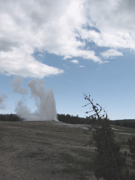 This is Old Faithful starting to erupt, pretty much right when they predicted it would.