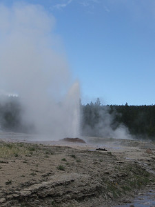 The Pink Cone Geyser