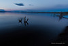 Yellowstone Lake at sunrise.<br /> The lake is pretty to look at, and is popular for fishing and boating - the latter activity very much weather dependent as sudden storms can occur at any time of year and make conditions very hazardous. The water is generally too cold for swimming, and the whole surface is frozen solid for several months in winter.