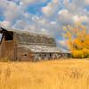 Driggs Idaho Barn