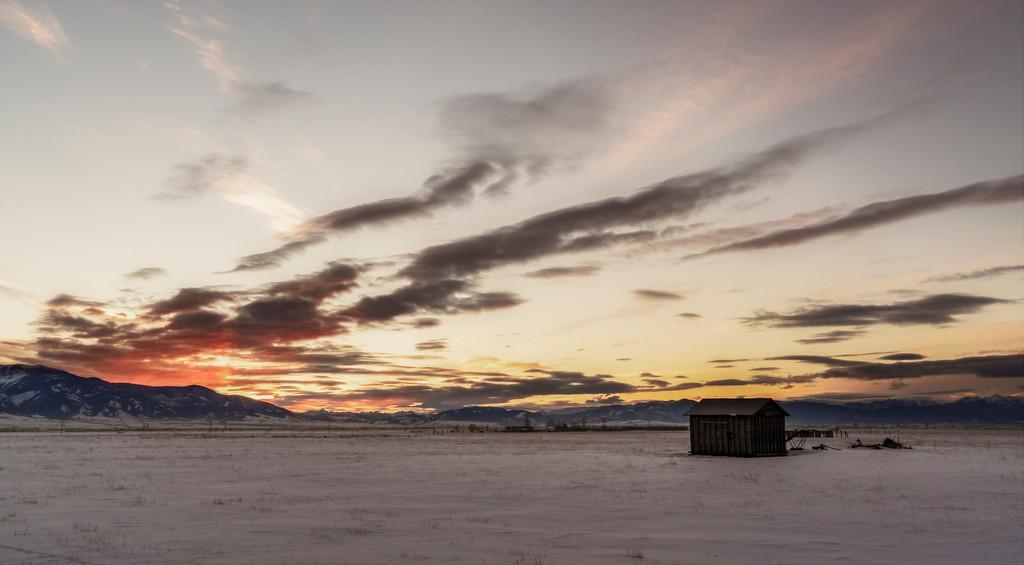 Montana Shed Sunrise