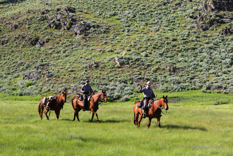 Park Rangers on horseback<br /> <br /> All Yellowstone employees do two things: help visitors enjoy the park and protect and preserve the park for future generations. The majority of the summer employees fall into the positions: Park Rangers and Laborers.Park Rangers: Staff visitor centers; lead naturalist walks; collect entrance and campground fees; issue backcountry permits; patrol roads, and perform law enforcement duties.
