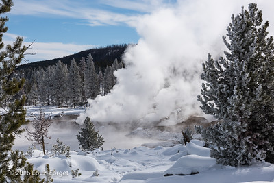 Fumaroles near Yellowstone Lake, Yellowstone National Park
