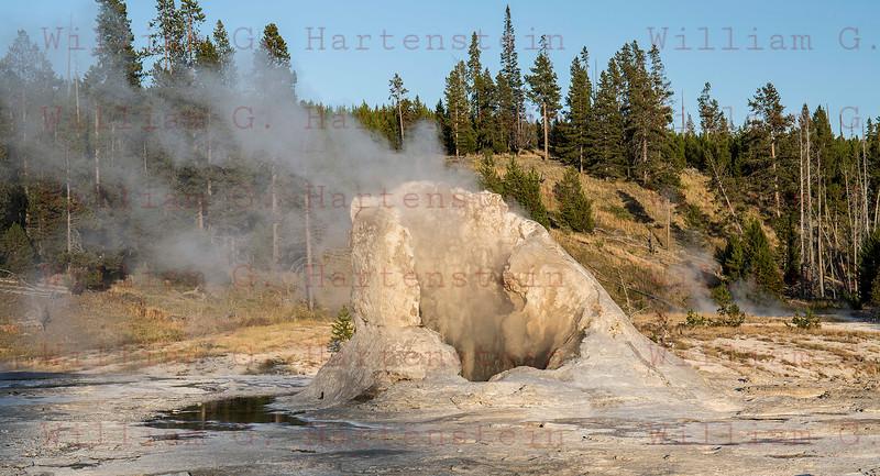 Castle Gyser, Yellowstone, WY 08-16-2017
