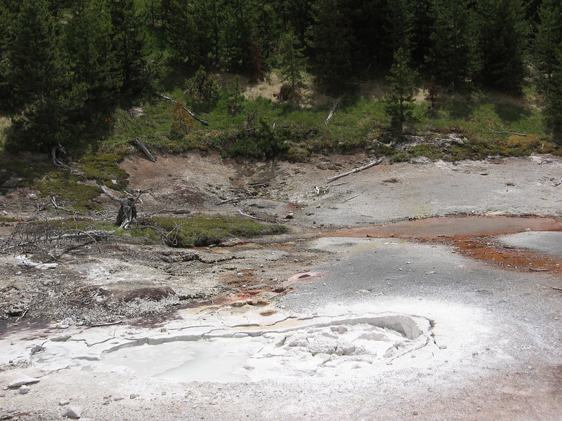 On our last day in Yellowstone, we went to Artist Paint Pots, more sulfurous steaming mud. The mud is produced when thermophilic bacteria break down the rocks, so at the microscopic level, these hostile pits of stinky goo are teeming with life.