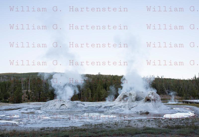 Grotto Geyser, Yellowstone, WY 08-17-2017