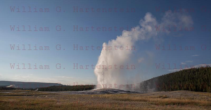 Old Faithful Geyser, Yellowstone, WY 08-17-2017