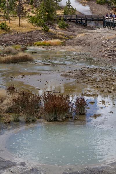 Mudpot at Sulfur Caldron