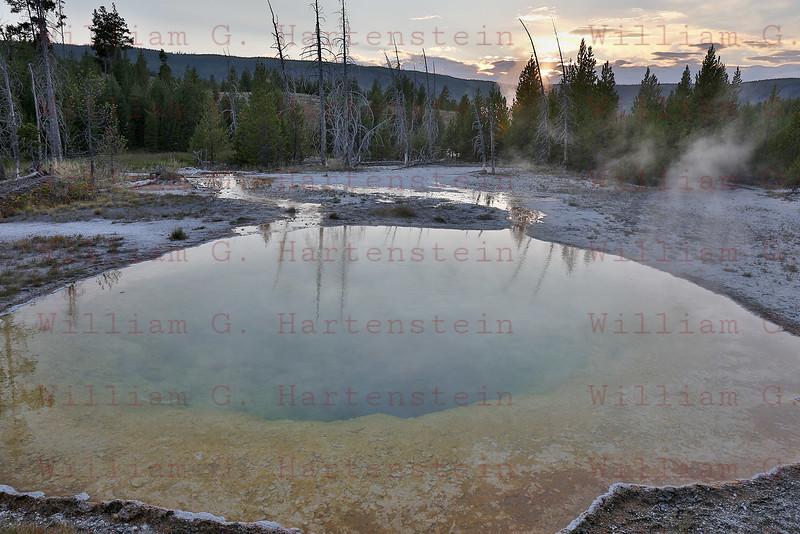 Geyser, Yellowstone, WY 08-17-2017