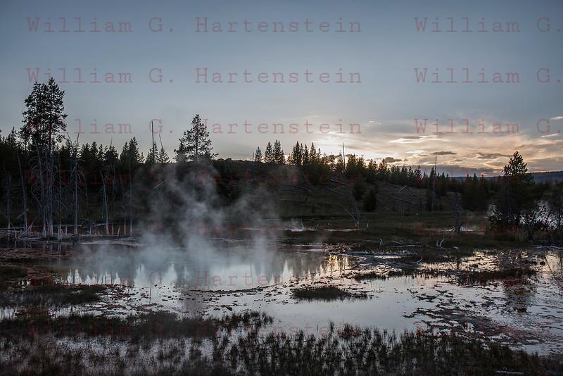 Gyser, Yellowstone, WY 08-16-2017