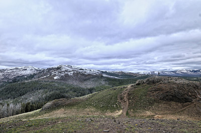 Yellowstone, Near Dunraven Pass