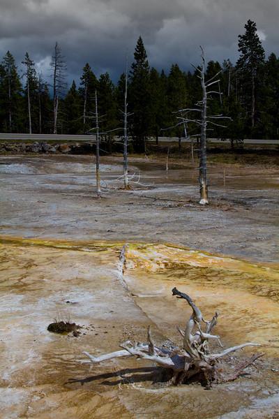 Lower Geyser Basin, Yellowstone National Park
