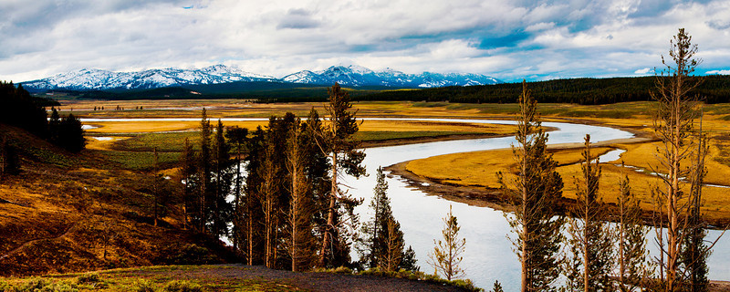 Riverscape, Yellowstone National Park