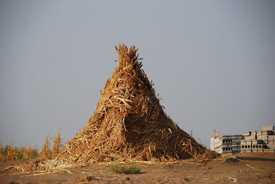 The Yemeni style of haystack.