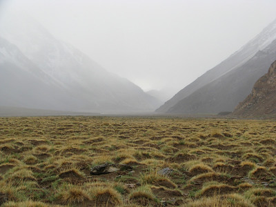 Upper Maipo River valley.