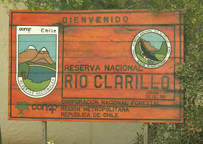 November 14: To RN Rio Clarillo, a warm, dry Andean foothills park.