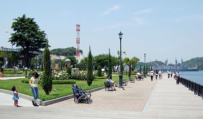Yokosuka Boardwalk of Roses