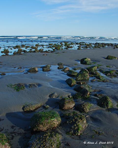 Rocks along Long Sands Beach