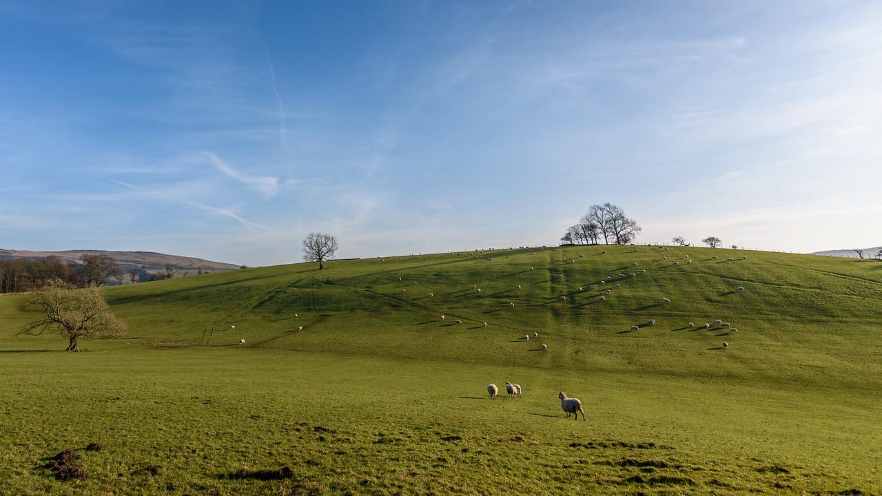 Countryside near Skipton