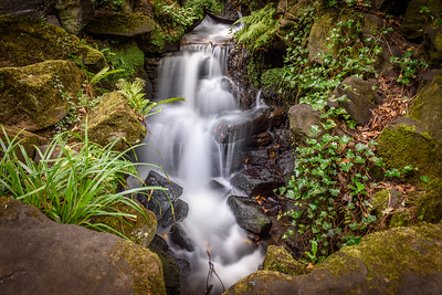 Endcliffe Park Waterfall #1