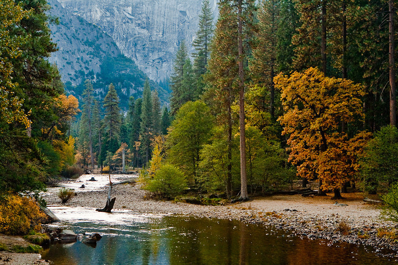 The Merced River, between Sugar Pine Bridge and the Backpacker's Camp.